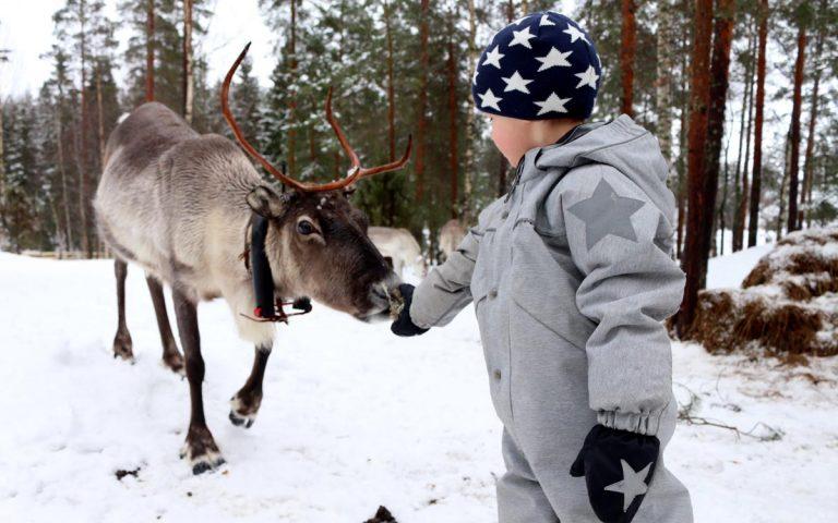 Porokylä- Reindeer village