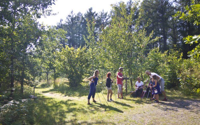 Hei, me bongataan puita! – Puulajipuiston lajikirjoa ja sauvat tauolle Karjalankalliolla